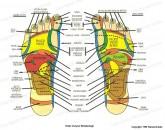 Mapy stóp i dłoni